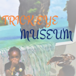 Phuket Trick Eye Musuem– One of the Best Family Friendly Things to do in Phuket